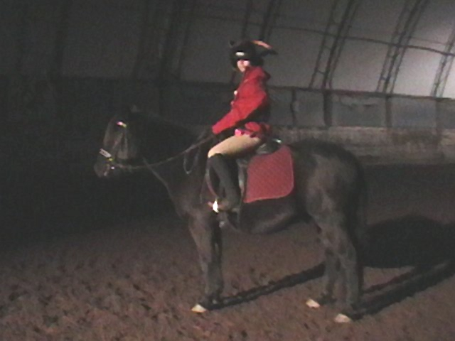 Equestrian Theater Production